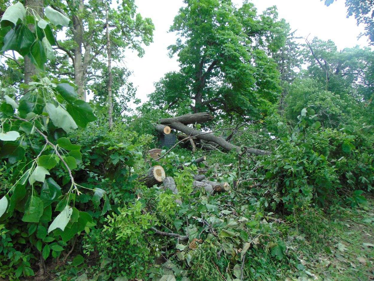 Storm damage at Ashland Cemetery in St. Joseph/Photo by Brent Martin