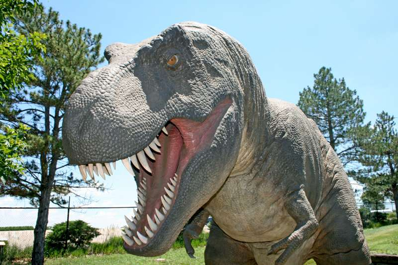 <b>One of the dinosaurs at Rolling Hills Zoo. </b>Photo courtesy RHZ